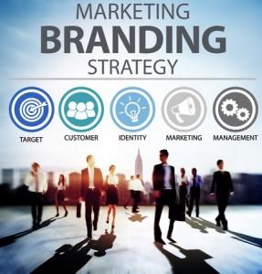 Brand Roadmap
